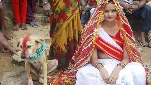 امرأة-هندية-تتزوج-كلباً