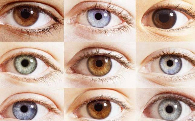 ما الذي يكشفه لون العينين عن الزوج أو الزوجة